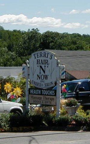 Terris Hair-N-Now
